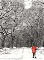 Winters Walkin NYC Central Park